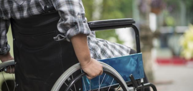 Sawiris Undergraduate Scholarship for Students with Disabilities