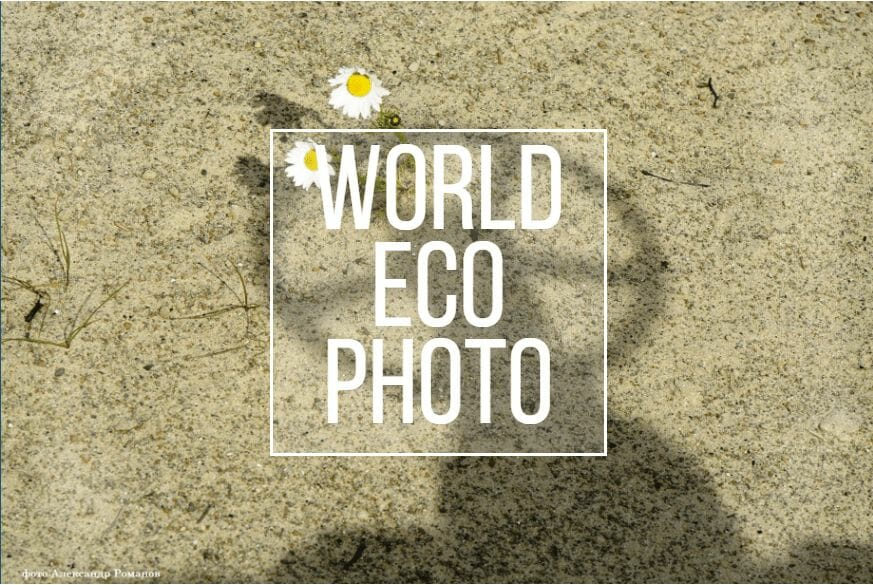 Join The International World Eco Photo Contest 2020