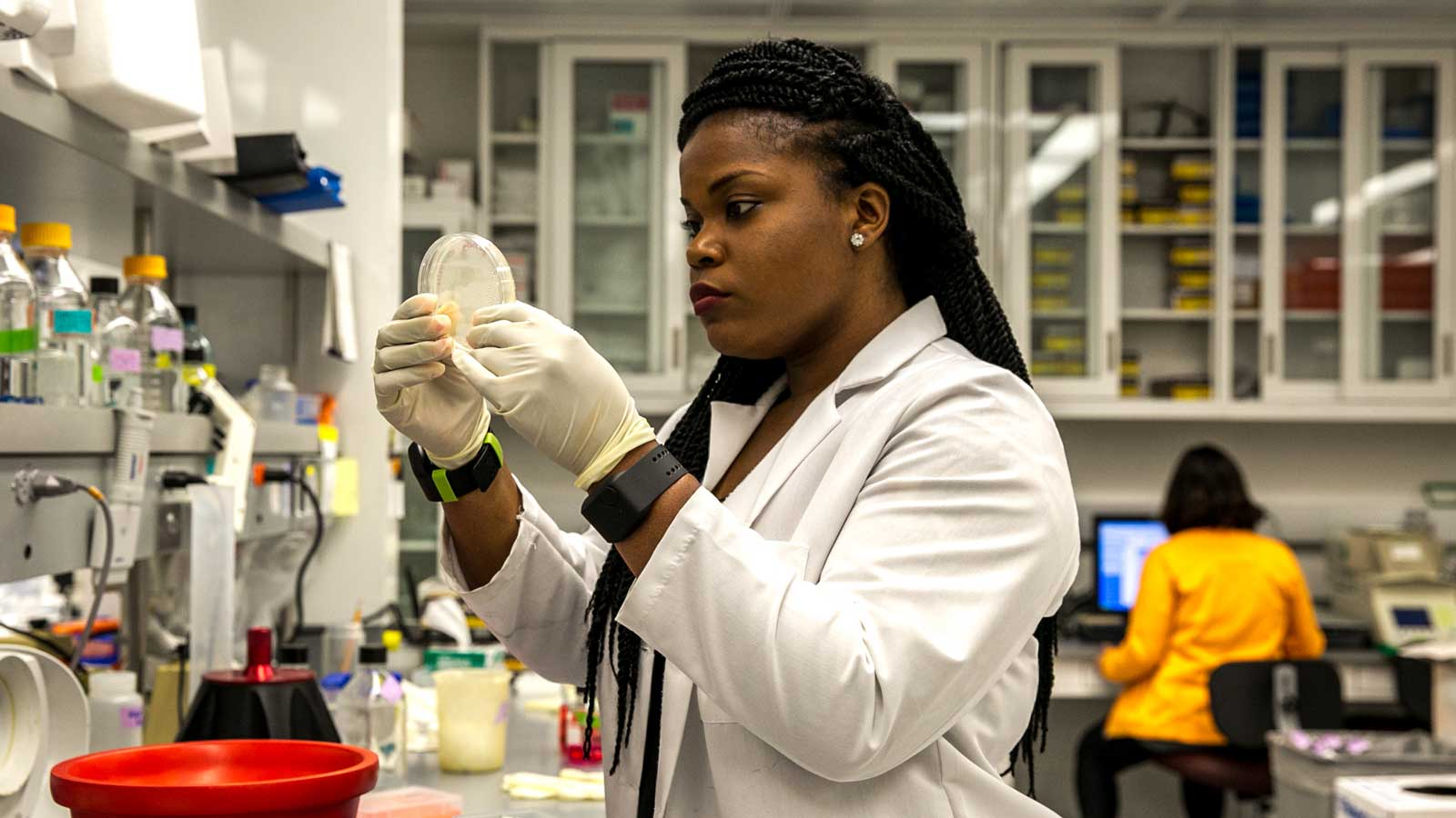 Apply for NIG Summer Internship in Genetics and Life Sciences Japan 2021 (Fully Funded)