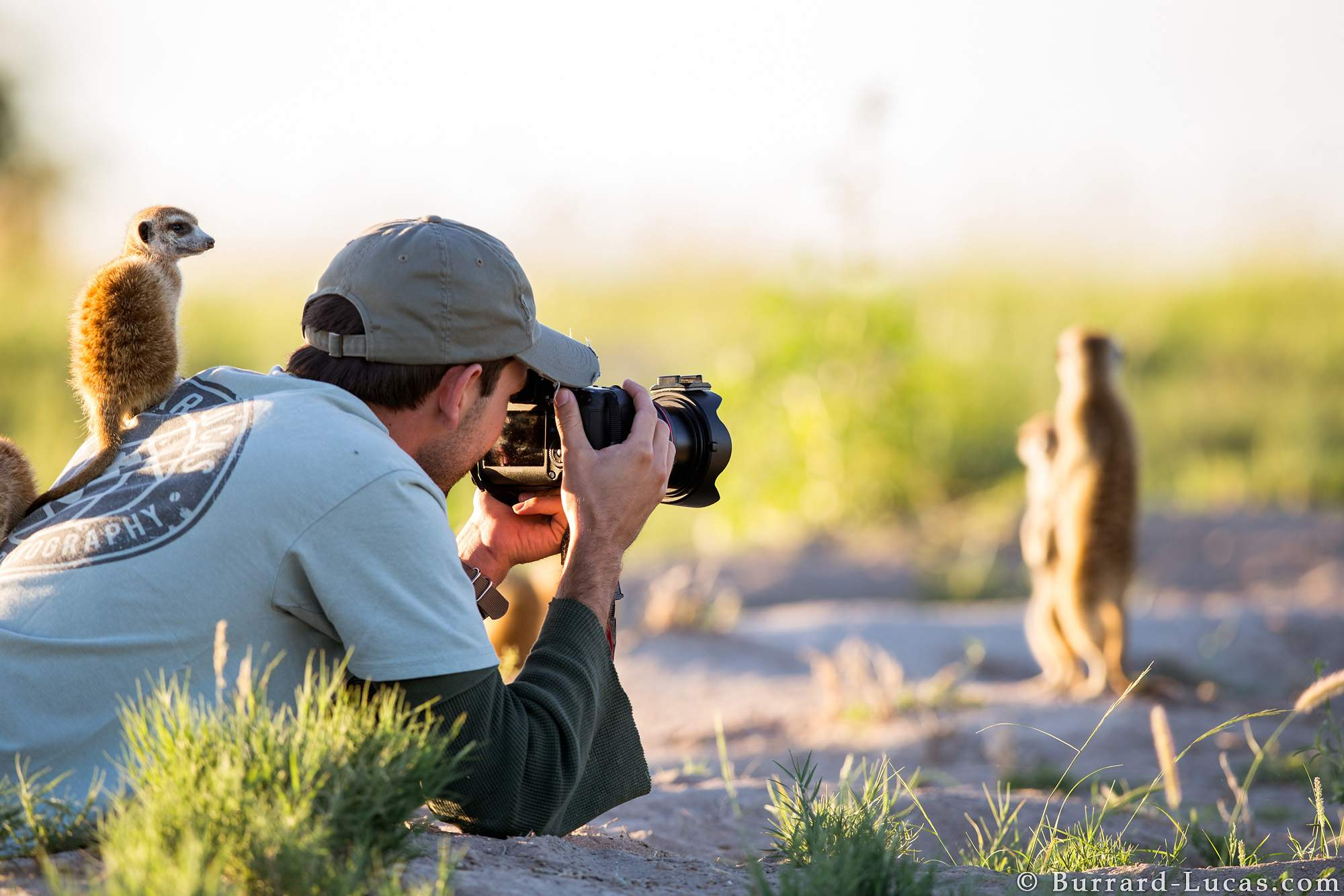 The Nature Conservancy's 2021 Online Contest for photographers with cash prizes Up to $1,000 USD